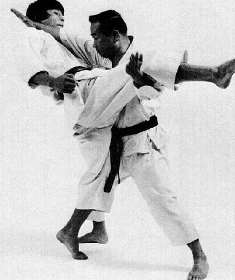 jiu jitsu japonés sa fight company